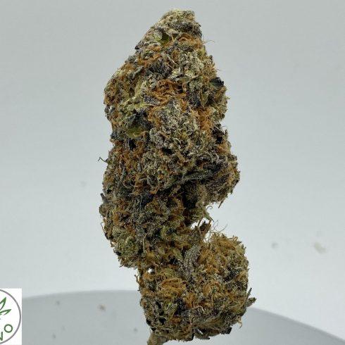 Durban Poison Sativa