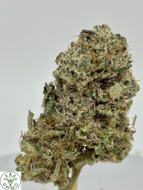 Girl Scout Cookies Hybrid Indica