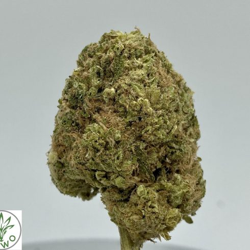 Dirty Banana Hybrid Sativa