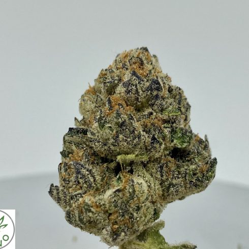 Purple Punch Hybrid Indica