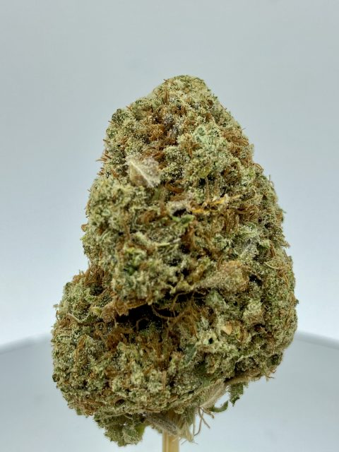Mystery Dominant Indica