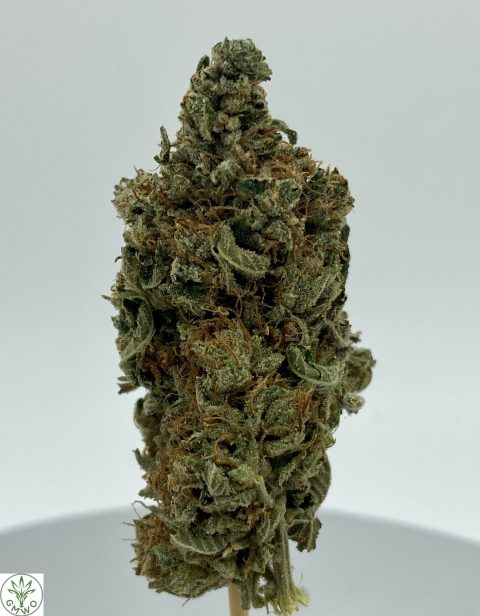 Pink Gas Mask Indica Dominant