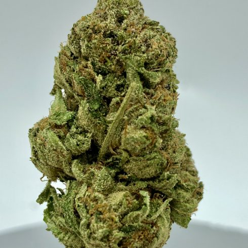 Tom Ford BEST INDICA
