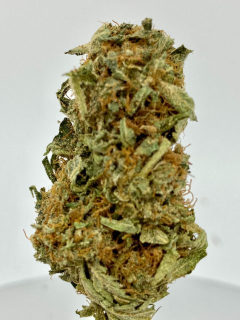Blueberry Cheap Indica Dominant