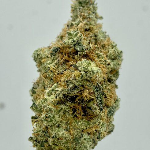 Mango Green Crack Sativa