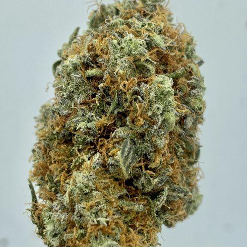 Blue Muffin Hybrid Sativa
